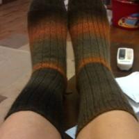 Finished Objects Friday - Anya's Dog & Ribbed Socks